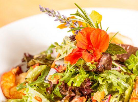 Frischer Salat im Gasthaus Laurer von Stephan Böhm