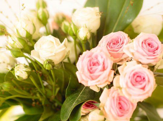 Rosen im Gasthaus Laurer von Stephan Böhm