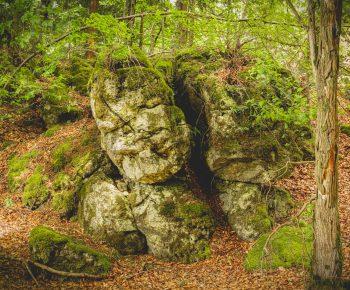 Steinener Wächter - Hagfels